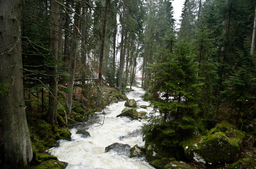 Водопад Триберг впадает в реку Гутах